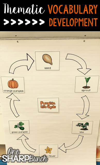 Do your student struggle with learning new vocabulary words? Check out these tips for building vocabulary and making abstract words more concrete! Plus, there are a variety of pumpkin ideas perfect for pumpkin week, like this life cycle of a pumpkin anchor chart!