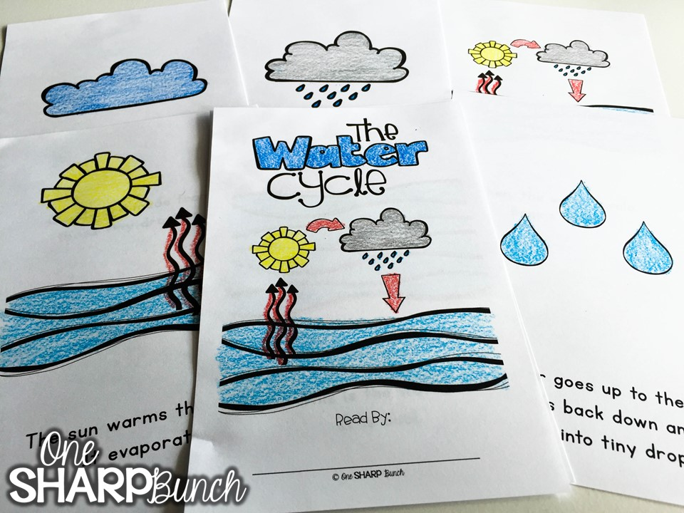 Teach your kindergarten students all about rain and clouds using this water cycle experiment for kids! Perfect for a rainy day this spring, or as a complement to your weather activities! Follow these super simple steps using just water and ice!