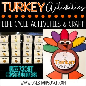 Turkey Life Cycle Activities