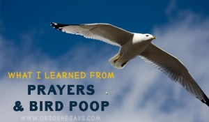 What I Learned from Prayers and Bird Poop (he: Dan) ~ www.orsoshesays.com