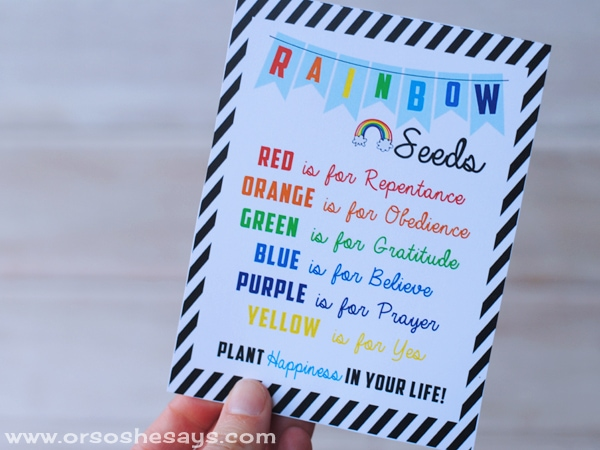 This hands-on Family Night lesson will help the whole family see how beneficial it is to plant happiness. And it's pretty yummy, too! Get all the lesson info on www.orsoshesays.com.