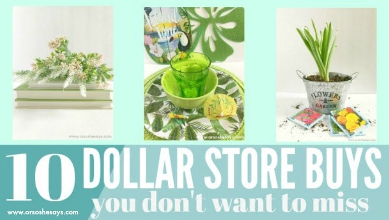 My tops picks for today's post are in no particular order, and cover a range of categories. In my opinion, these are the things to buy at the Dollar Store that are definitely worth it. www.orsoshesays.com #dollarstore #dollartree #dollarstorefinds #dollartreefinds #thingstobuyatthedollarstore #dollarstorenearme #myfavoritethings #lds #mormon #ldsblogger #mormonblogger #decor #books #plants #summerfun