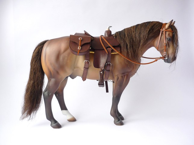 Wolfy with a dark brown saddle