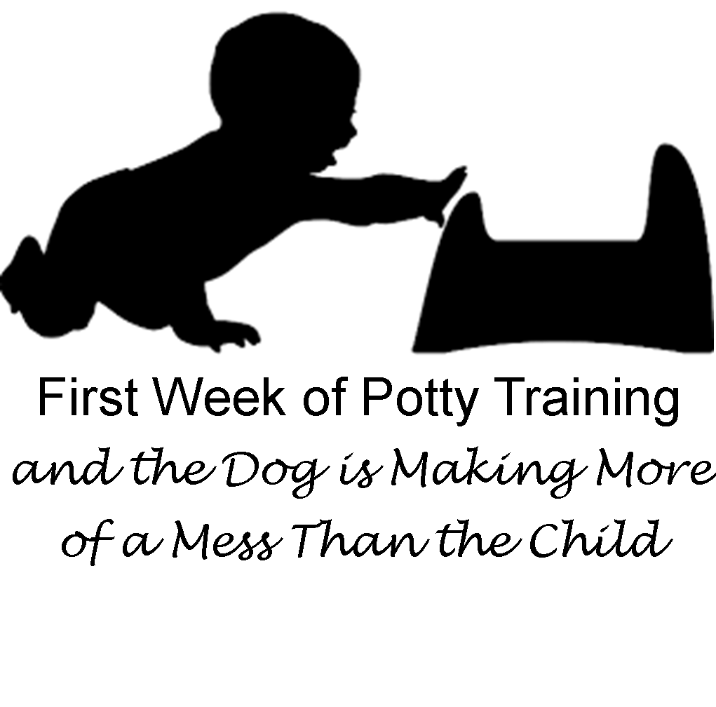 First Week of Potty Training and the Dog is Making More of