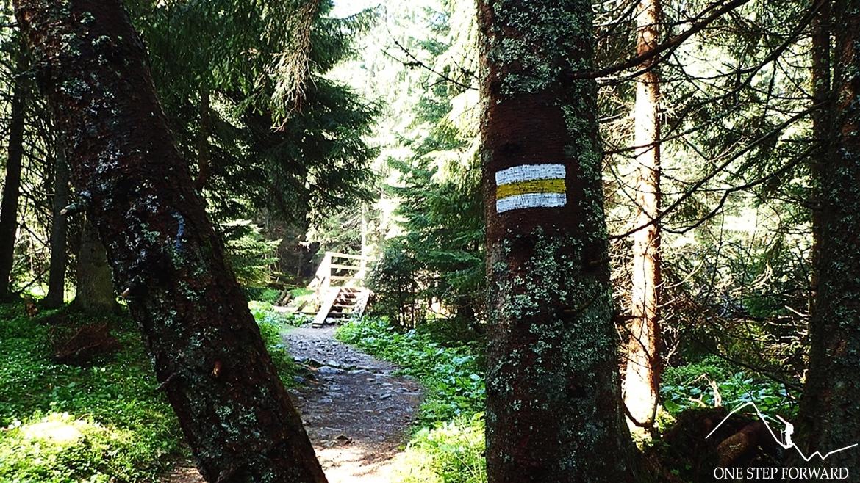 Żółte oznakowanie prowadzące na Iwaniacką Przełęcz