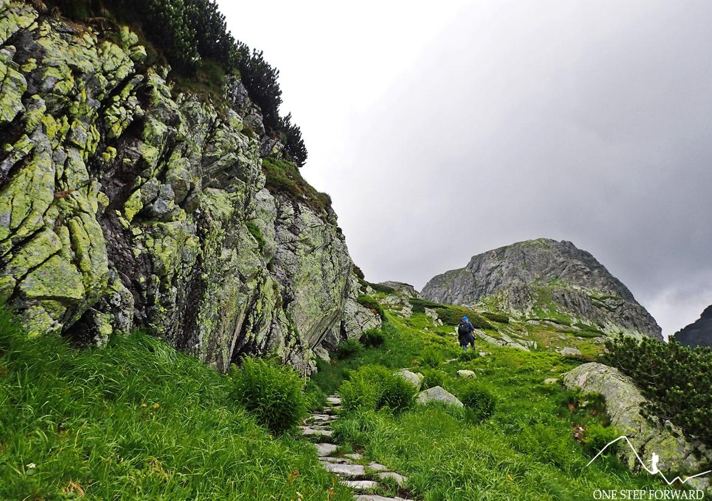 Podejście do Dolinki pod Kołem