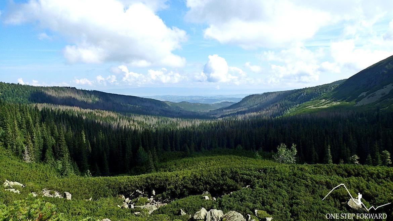Widok na Dolinę Gąsienicową