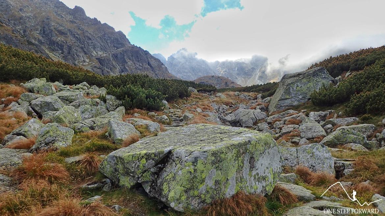 Podejście na Przełęcz Krzyżne - Dolina Pańszczycy