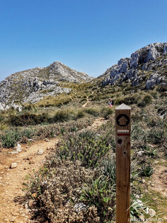 Widok na Puig d'en Galileu - trekking na Majorce