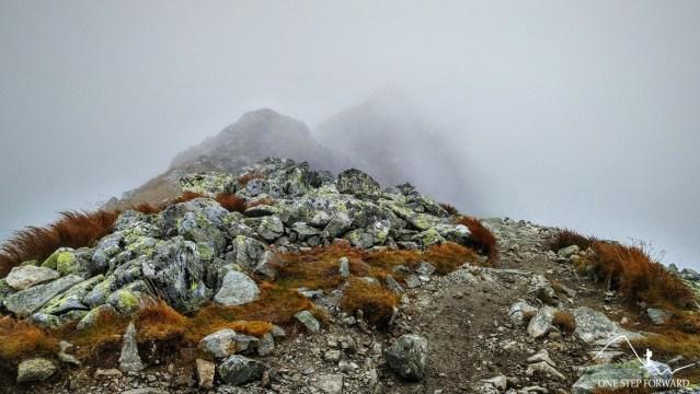 Szlak na Spaloną Kope w Tatrach Zachodnich - zejście z Pachoła