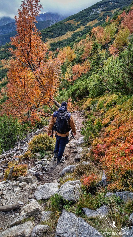 Jesień w Tatrach Zachodnich - zejście w kierunku Spalonego Żlebu