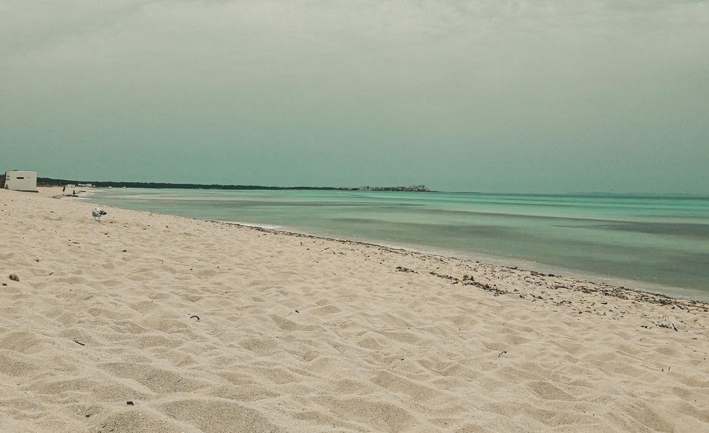 Plaża Es Trenc na Majorkce