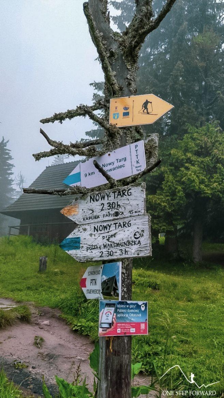 Żółty szlak do Kowańca - okolice schroniska na Turbaczu