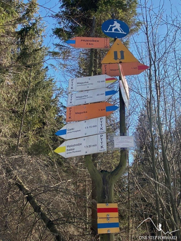 Czupel - skrzyżowanie szlaków na Sokołówce (835 m n.p.m.)