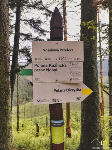 Nosalowa Przełęcz (1103 m n.p.m.)
