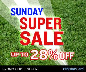 Sale :: Super Sunday!