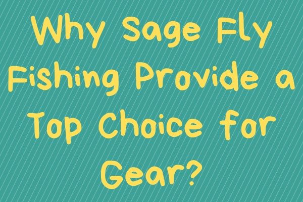 Why Sage Fly Fishing Provide a Top Choice for Gear?