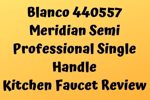 Blanco 440557 Meridian Semi Professional Single Handle Kitchen Faucet Review