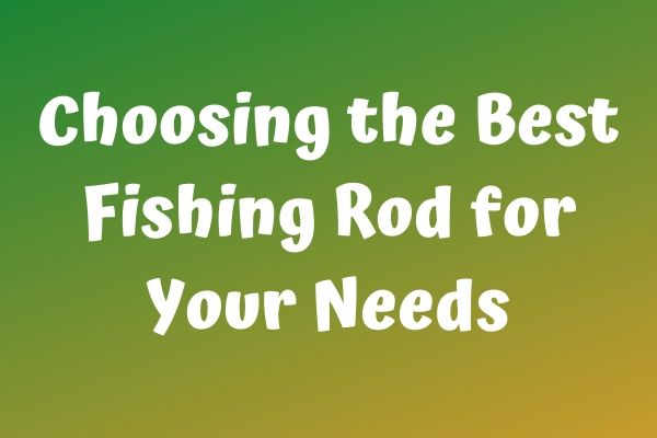 Choosing the Best Fishing Rod for Your Needs
