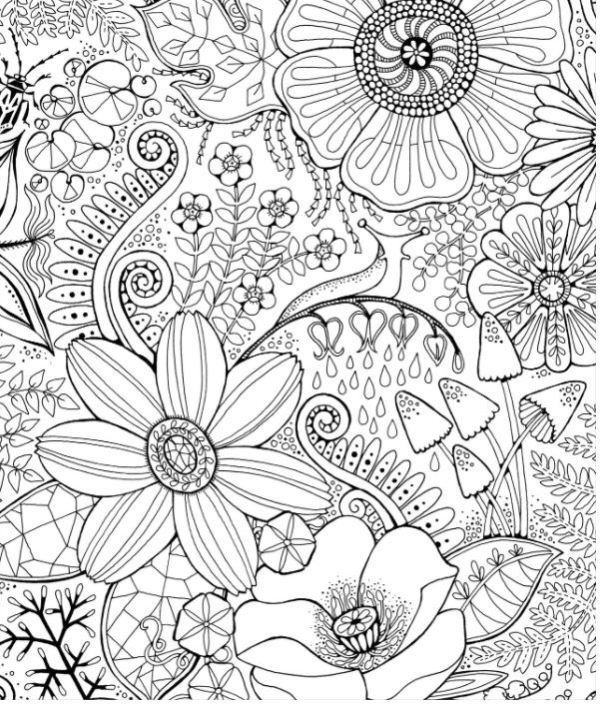 Adult Coloring Book Flowers in the Forest