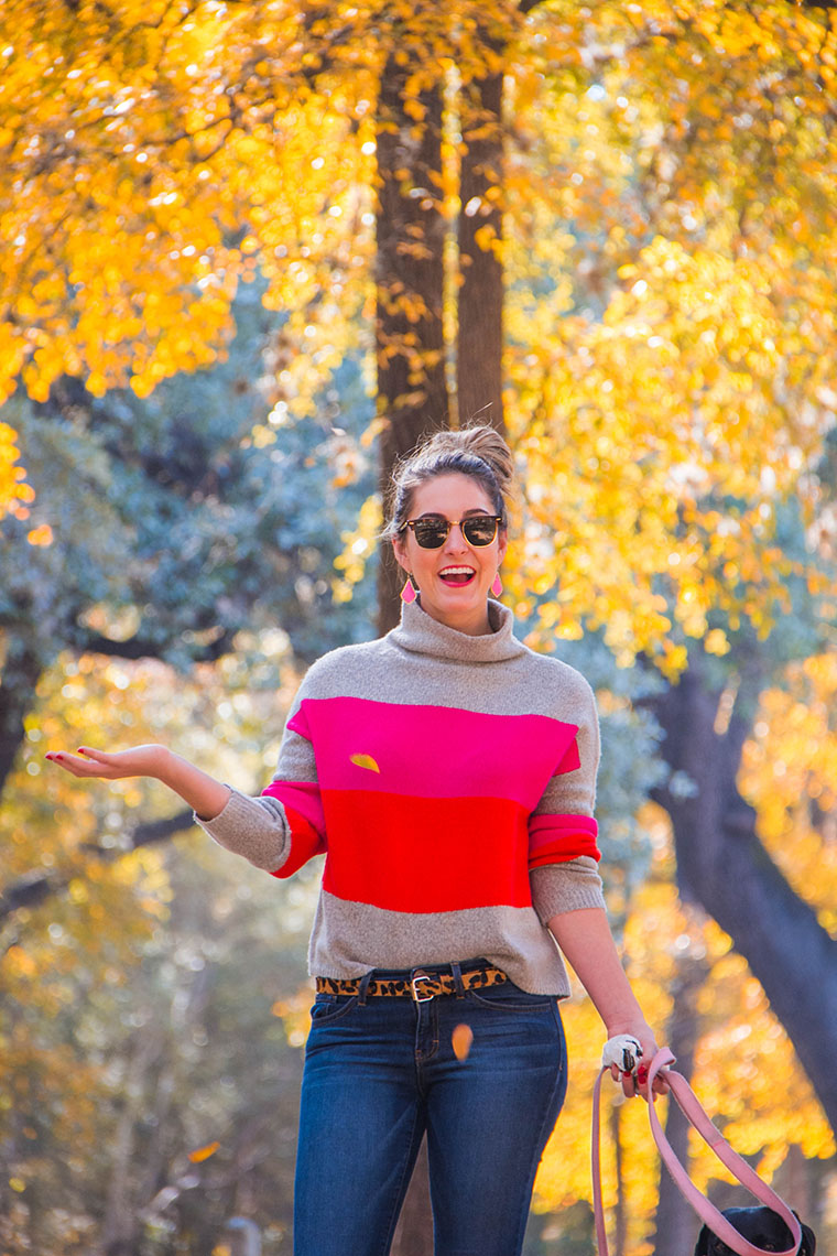 fall wonderland in San Antonio 4