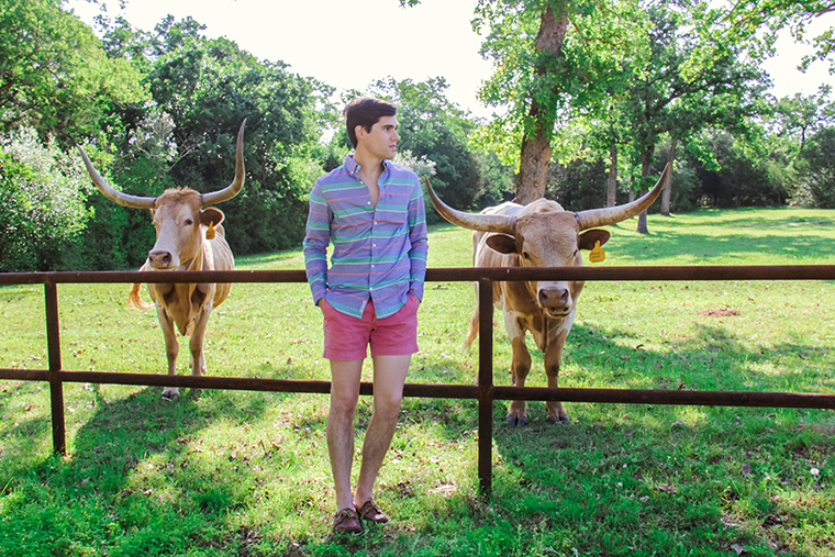 Texas Treehouse Getaway 6
