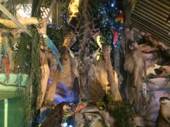 The fish camp is chock full of taxidermy, everywhere you look you see a different animal!