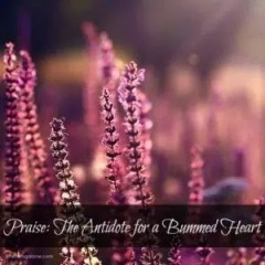 Praise: The Antidote for a Bummed Heart