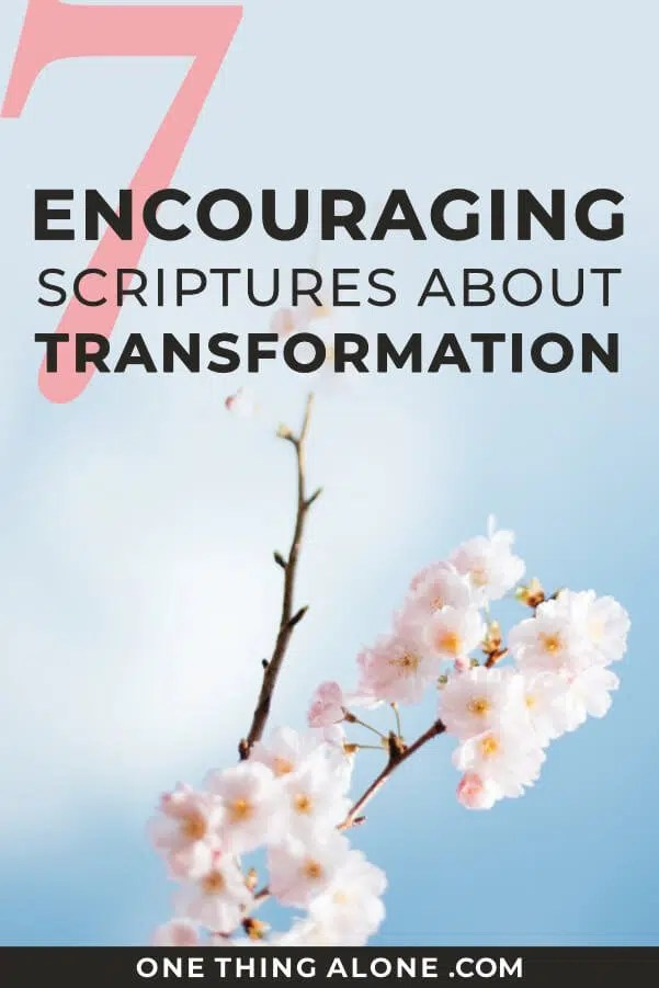 7 Encouraging Scriptures About Transformation | One Thing Alone