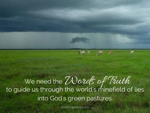 Guided into green pastures