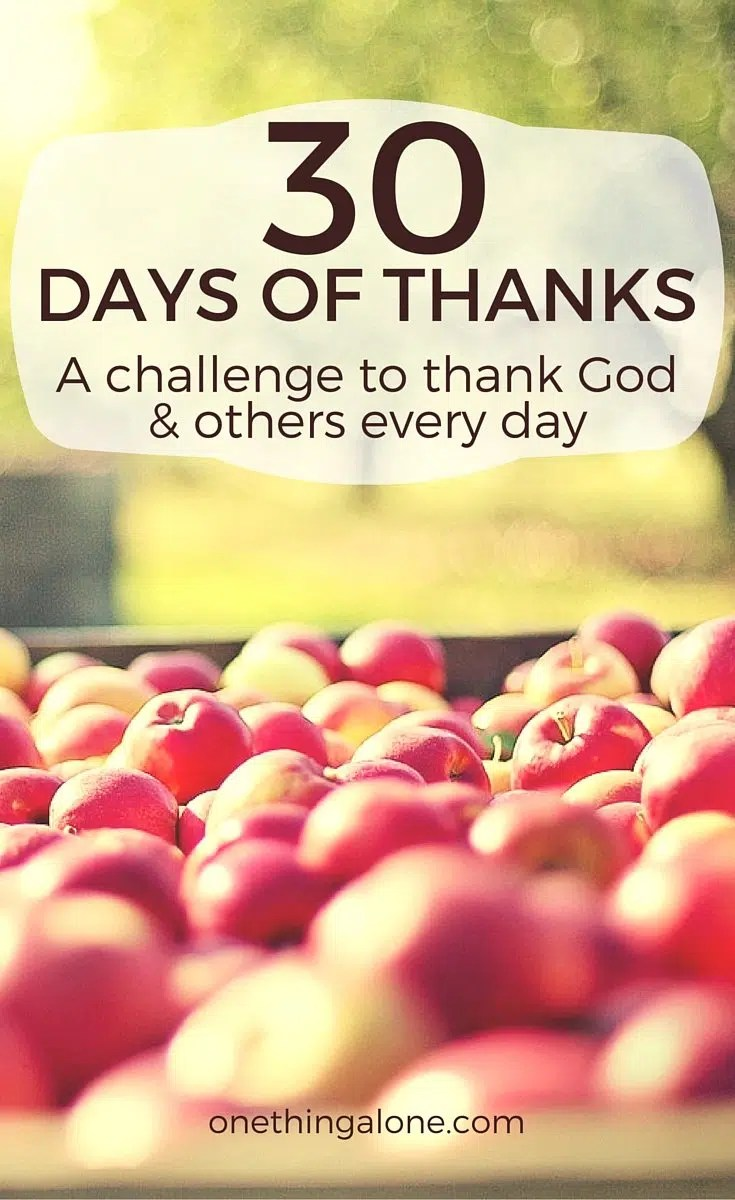 30 Days of Saying Thanks: How to Take Your Thanksgiving