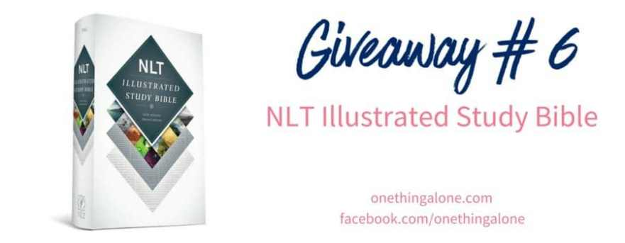Giveaway 6 Illustrated Bible