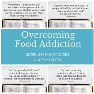 bible memory cards_food1