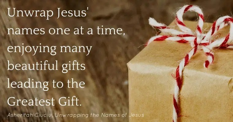 unwrapping the names of jesus reviews