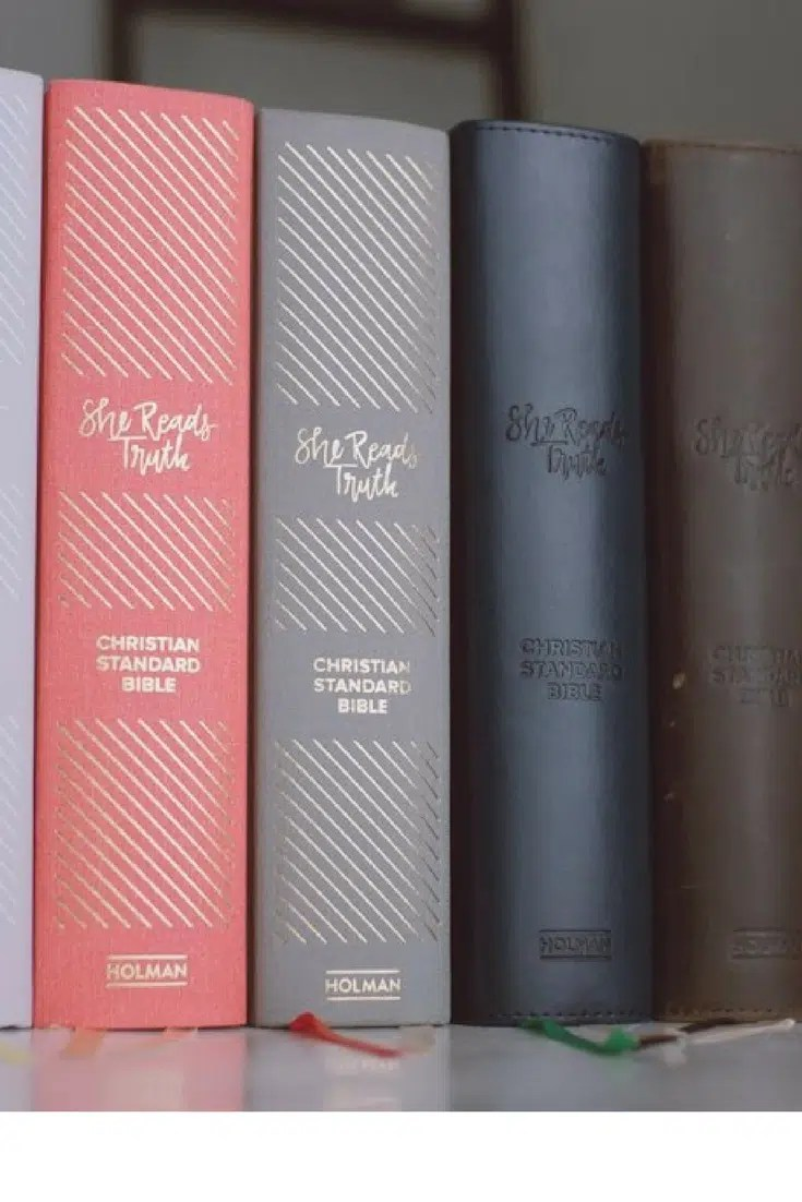 My Honest Review of the She Reads Truth Bible   One Thing Alone