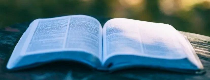 John's Epistles Reading Plan