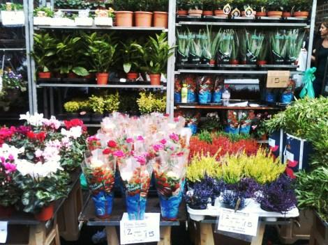 columbia flower market 1