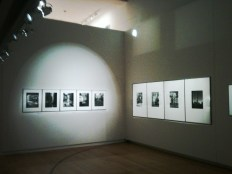 Gallery of Photography_Dublin 8