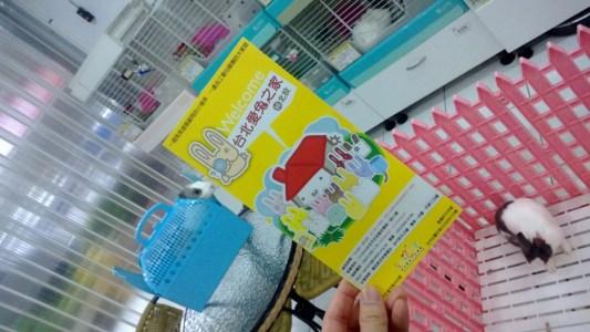 台北市愛兔之家 -6