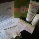 Burt's Bees Natural Skin Solutions for Sensitive Skin BzzAgent Review