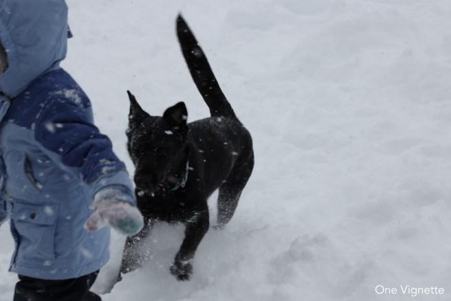 1.26.16. Snow Day. Riley