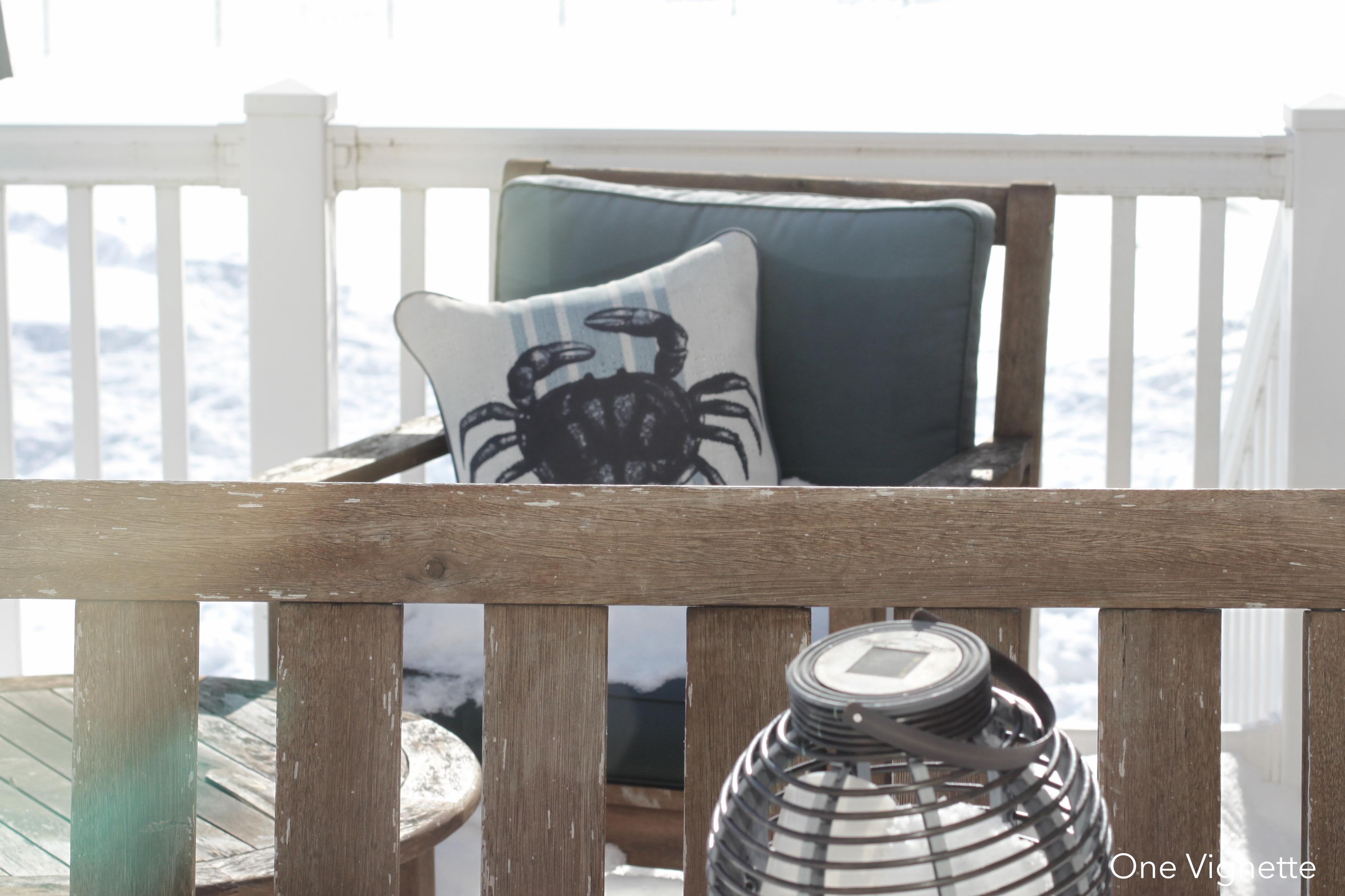 1.28.16. Snow Day 2. crab pillow