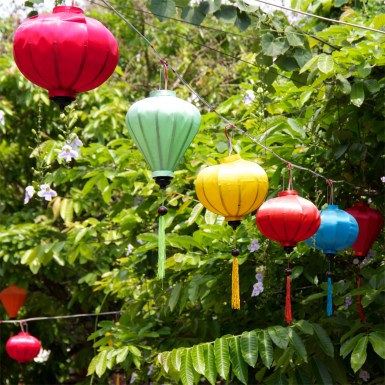 Not quite Chinese Lanterns