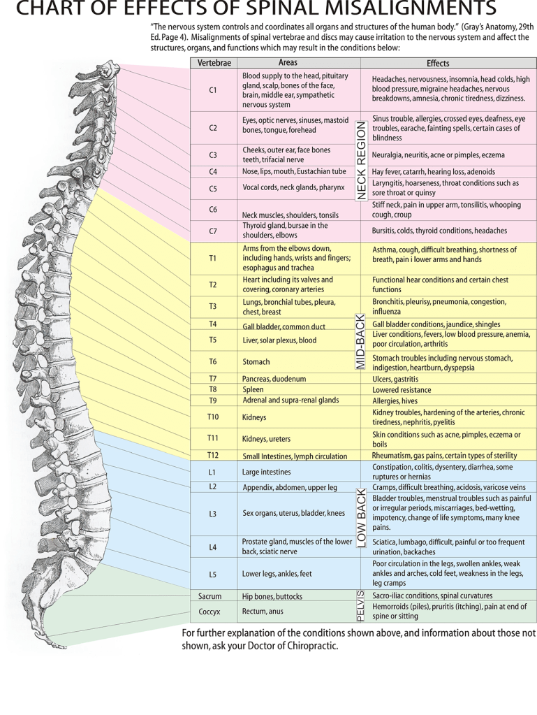 Chart - Effects Of Spinal Misalignments