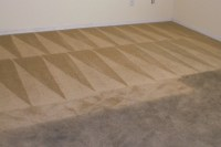 one way carpet cleaning michigan - Home The Honoroak