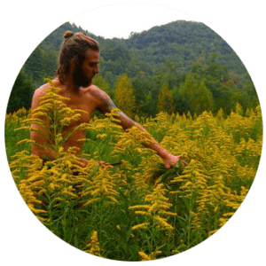 harvesting_golden_rod_circle