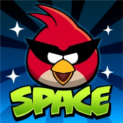 angry_bidrs_Space
