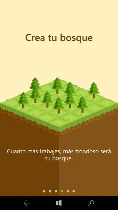 Forest (6)