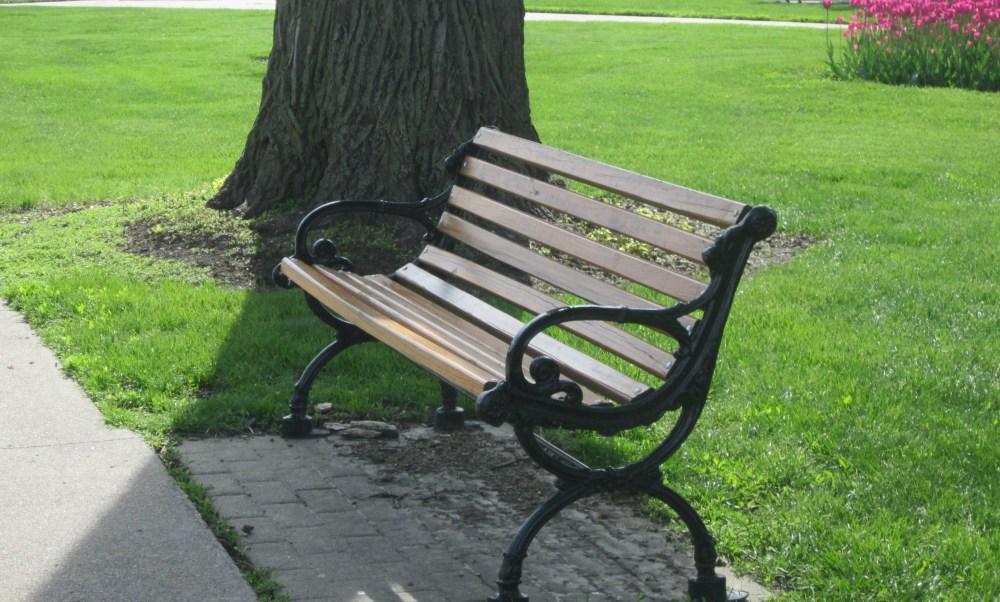 bench 2000x1204