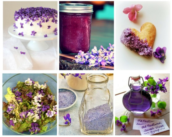 violet recipe roundup collage